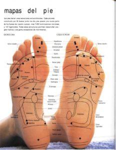 21 a . reflexologia en los pies